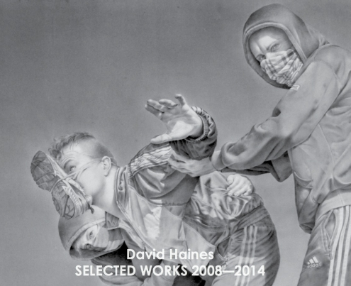 Publication David Haines: Selected works 2008 - 2014